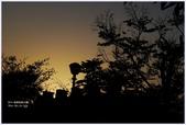 2012-板橋音樂公園隨拍:P1510971.JPG