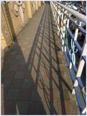 2012-木棉花的春天:P1520041.JPG