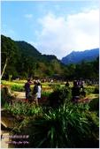 2012-桃源仙谷春遊記:P1500238.JPG