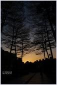 2012-板橋音樂公園隨拍:P1510982.JPG