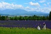 2017.07 北海道 Day 2:DSC_1428.JPG