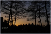 2012-板橋音樂公園隨拍:P1510985.JPG