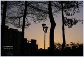2012-板橋音樂公園隨拍:P1510986.JPG