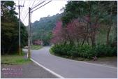 2012-桃源仙谷春遊記:P1500362.JPG