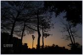 2012-板橋音樂公園隨拍:P1510987.JPG