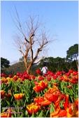 2012-桃源仙谷春遊記:P1500302.JPG