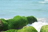 2015 老梅綠石槽:DSC_2829.JPG