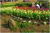 2012-桃源仙谷春遊記:P1500243.JPG