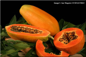 1:papaya2.jpg