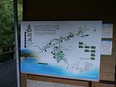 向陽山.三叉山.嘉明湖國家步道:P1120763.JPG