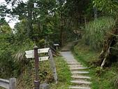 太平山.翠峰湖,步道探索:P1110514.JPG