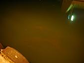萬里龜吼漁港夜釣竹莢:P1100391.JPG