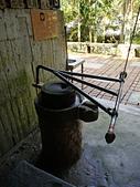 頭城農場遊趣:P1110136.JPG