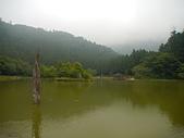 明池國家森林遊樂區:P1120517.JPG