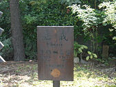 嘉義市徒步旅遊:P1060249.JPG