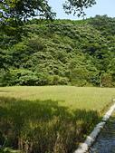 頭城農場遊趣:P1110152.JPG