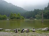 明池國家森林遊樂區:P1120530.JPG