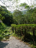 頭城農場遊趣:P1110155.JPG