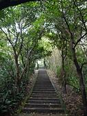台北象山觀景:P1080996.JPG