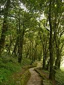 明池國家森林遊樂區:P1120549.JPG