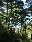 向陽山.三叉山.嘉明湖國家步道:P1120791.JPG
