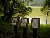 明池國家森林遊樂區:P1120551.JPG