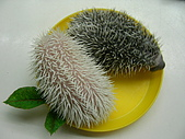 巧克力.布丁.小饅頭~刺蝟三姐妹!:和果子4.JPG