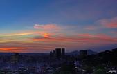 紅景天:IMGP2592-11.jpg