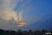 藍天、雲彩、蘆葦:IMGP3082-11.jpg