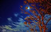 越夜越美麗:IMGP0459-11.jpg