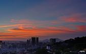 紅景天:IMGP2603-11.jpg