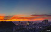 紅景天:IMGP2619-11.jpg