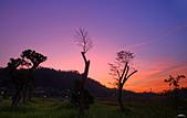 落日、彤雲:IMGP9152-11.jpg
