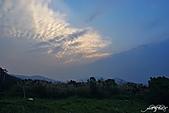 藍天、雲彩、蘆葦:IMGP3100-11.jpg