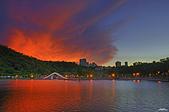 紅景天:IMGP6971-11.jpg