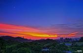 紅景天:IMGP9448-11.jpg