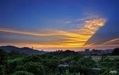 紅景天:IMGP9418-11.jpg