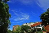 藍天白雲伴我行:IMGP0906-11.jpg