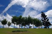 藍天白雲伴我行:IMGP1069-11.jpg