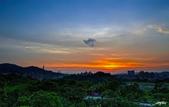 紅景天:IMGP9384-11.jpg