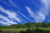 藍天白雲伴我行:IMGP0992-11.jpg