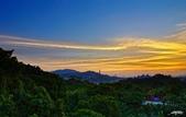 紅景天:IMGP9402-11.jpg
