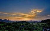 紅景天:IMGP9403-11.jpg