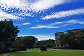 藍天白雲:IMGP4439-11.jpg