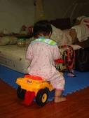 亭又寶貝1歲4個月:1768800615.jpg