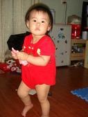 亭又寶貝1歲4個月:1768800591.jpg