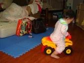亭又寶貝1歲4個月:1768800616.jpg
