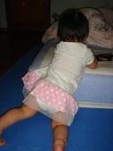 亭又寶貝1歲4個月:1768800542.jpg
