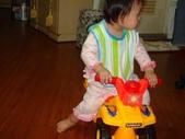 亭又寶貝1歲4個月:1768800618.jpg