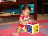 亭又寶貝1歲4個月:1768800642.jpg
